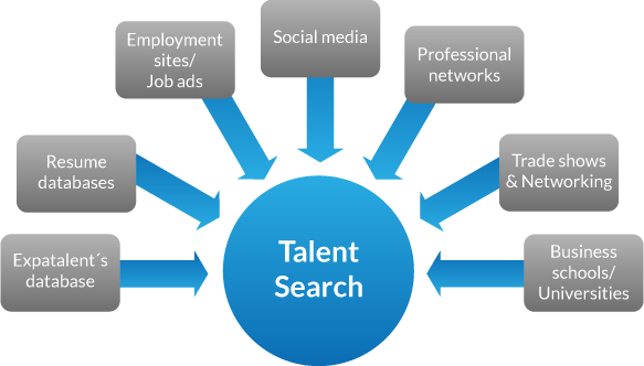 Tổng quan trí tri Talent Search & Selection (s&s)